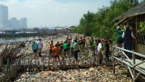 Ecomarine Mangrove, Hasil Kerjasama PJB dan Komunitas Mangrove 1