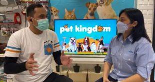Pet Kingdom Hadir Di Surabaya Dengan Fasilitas Terlengkap 8